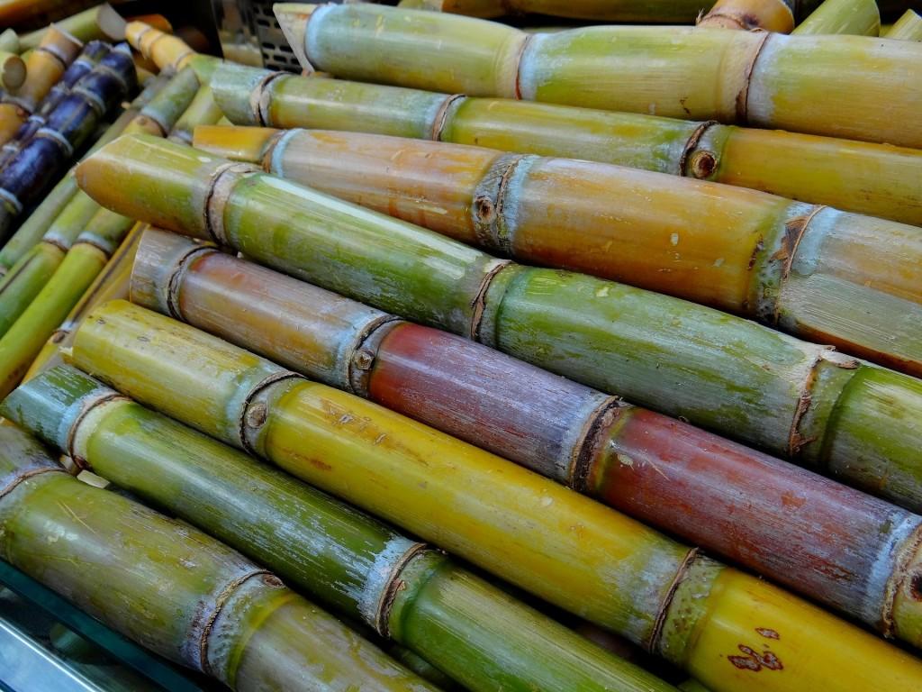 sugar-cane-276242_1920