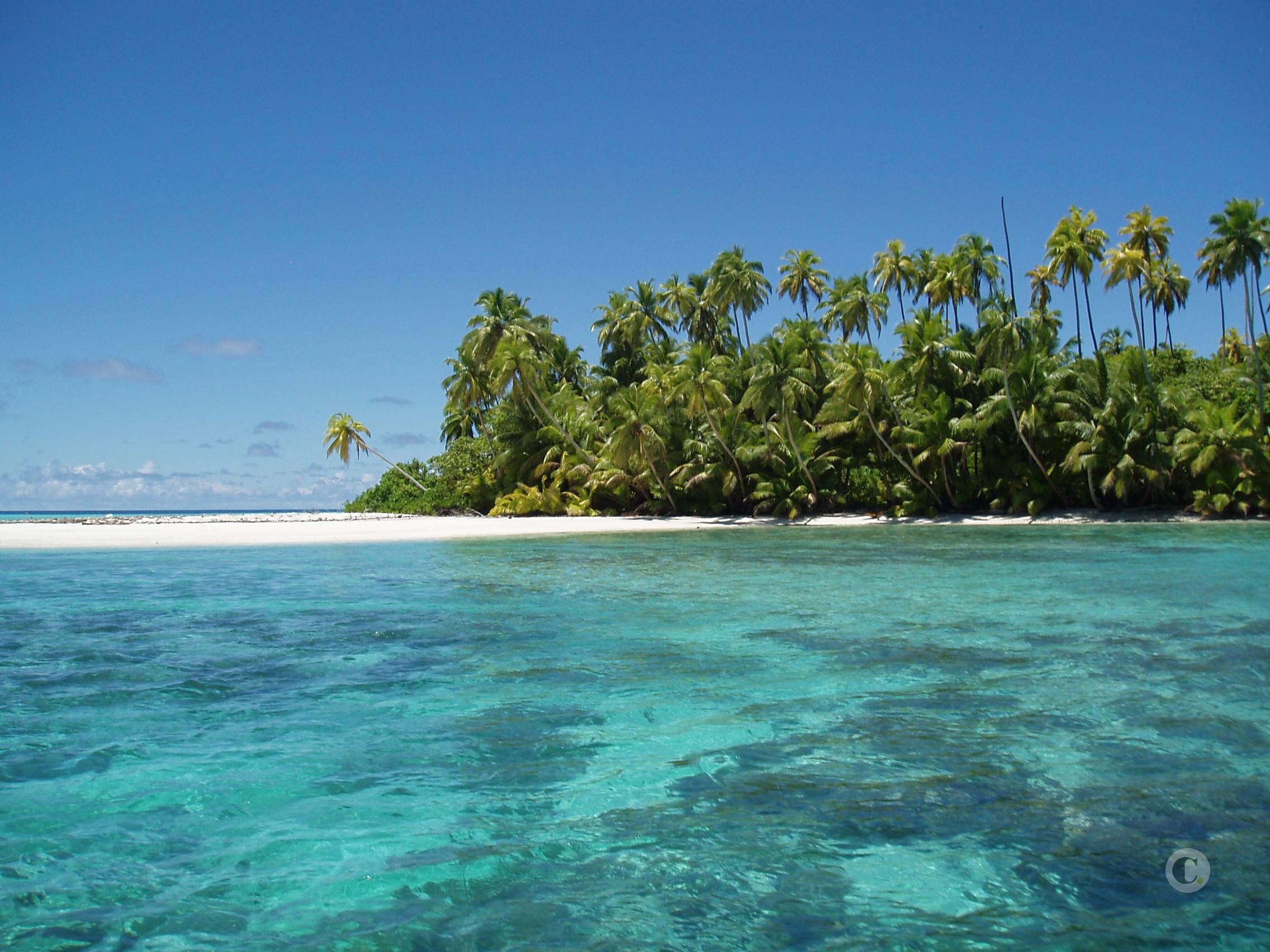 islas salomon wikipedia español
