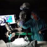 La cirugía en cerdos. Foto cortesía Sheikh Zayed Institute