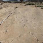 Las huellas halladas en Creta. Foto Andrzej Boczarowski