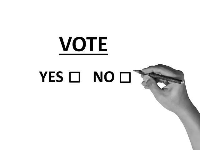 voto si o no