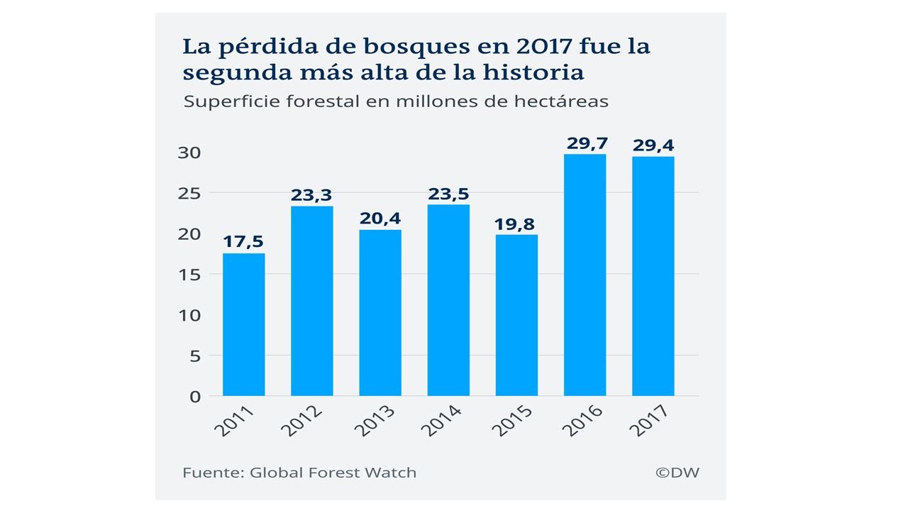 tala de bosques en el planeta