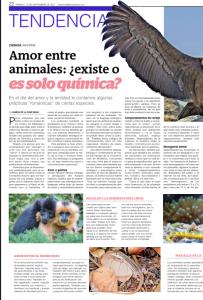 Amor entre animales ¿existe o es solo química_1