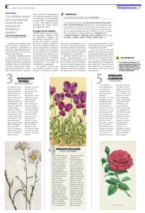 La magia detrás de los nombres botánicos_2-16_08_2021-26