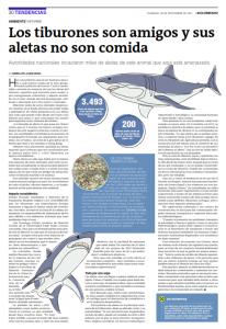 Los tiburones son amigos y sus aletas no son comida