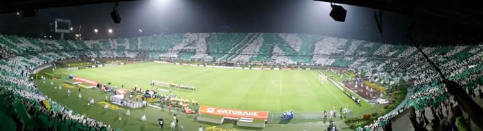 Foto Pulso Verde