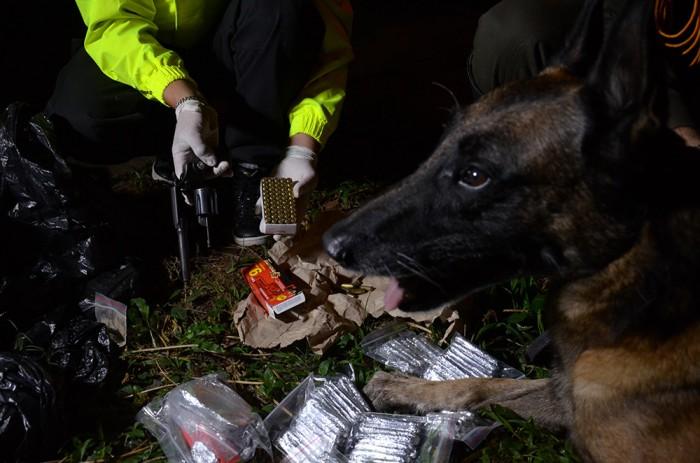 Con la ayuda de perros entrenados, los policías hallaron las drogas y las armas de la banda. Cortesía Policía Metropolitana.