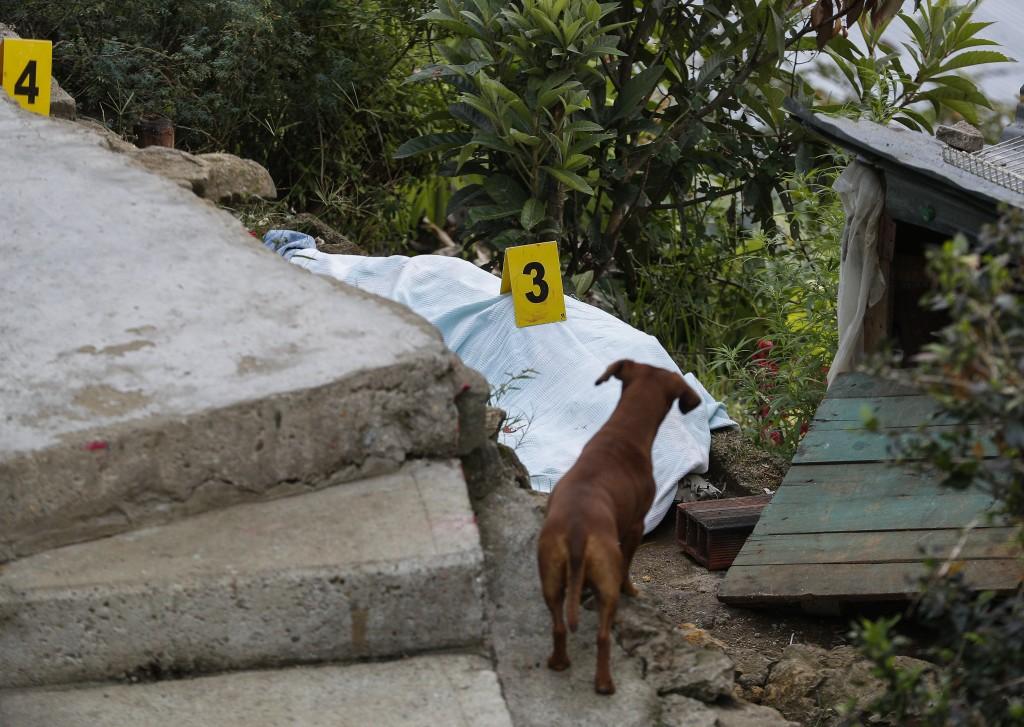 Escena del doble homicidio perpetrado el 10 de enero de 2019 en el barrio Llanaditas, de Medellín, durante un almuerzo familiar. Foto de Manuel Saldarriaga.