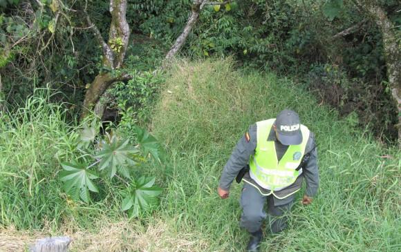 Las víctimas fueron llevadas a una boscosa, en la frontera de San Cristóbal con Robledo, y allí las asesinaron. Foto de archivo.